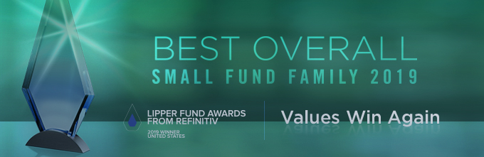Best Overall Small Fund Family 2019 Lipper Award